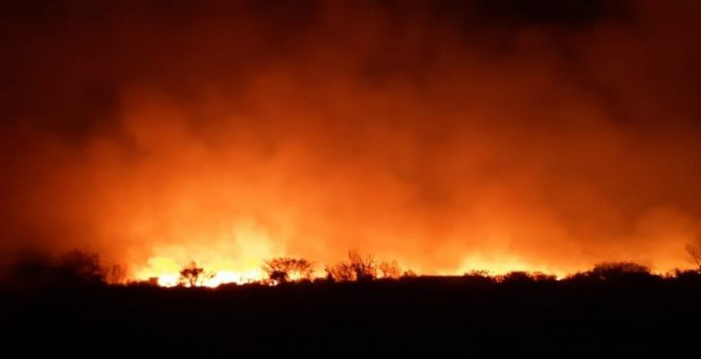Incêndio consome 300 ha da reserva florestal do Córrego do Veado